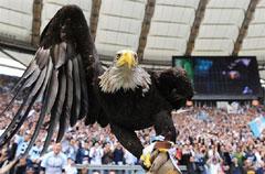 Орёл символ билета и талисман 81 тиража Футбольной лотереи 6 из 36