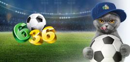 Как играть в Футбольную лотерею 6 из 36, правила